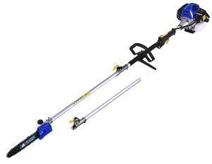 BLUE MAX 53542 32.6 cc Gasoline Pole Saw